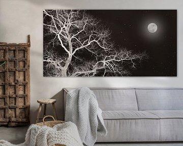 Nachtboom met maan van Corinne Welp