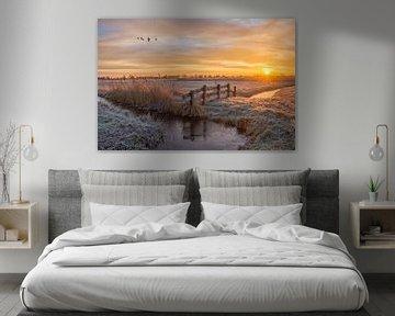 Zonsopkomst in de winter / Sunrise in de winter von Wim Kanis