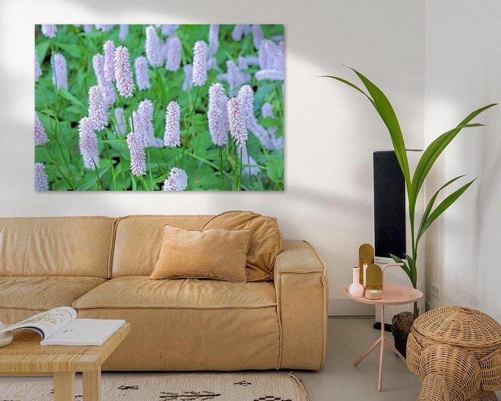 Sfeerimpressie: Adderwortel in bloei van Ronald Smits
