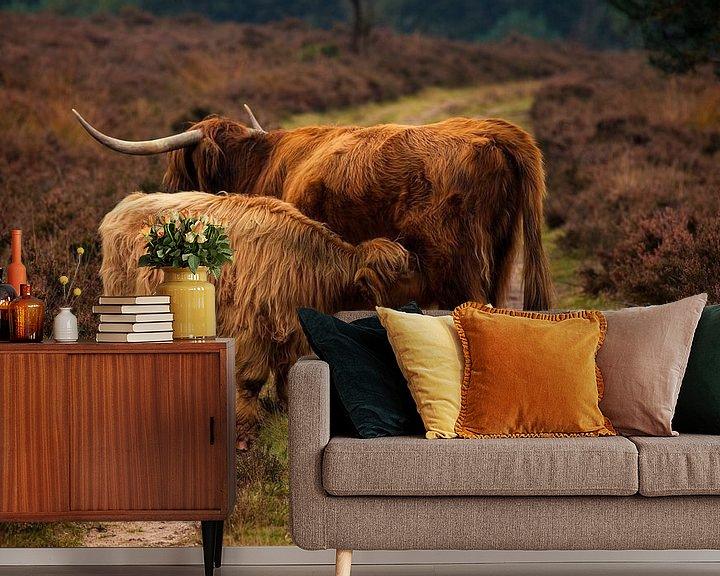 Sfeerimpressie behang: Schotse Hooglanders van Tim Abeln