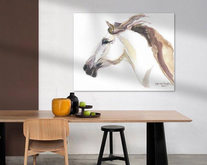 Beispiel: Pferd Julia von Go van Kampen