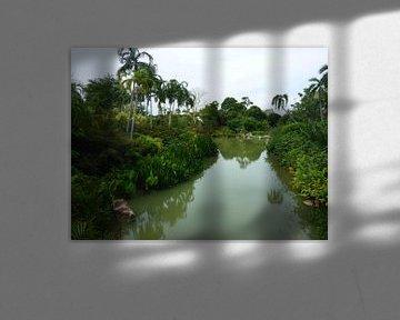 Singapore pond sur Daniël Majoor