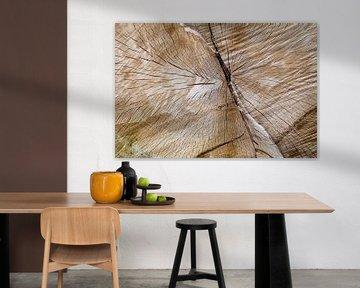 houtblok van Eugene Winthagen