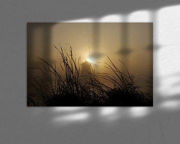 Molen tijdens zonsopkomst. van G. de Wit