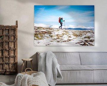 Winter hike in Noorwegen, Dovrefjell von Ruben Dario