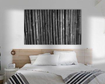 Bamboe in zwart-wit von Anne van de Beek