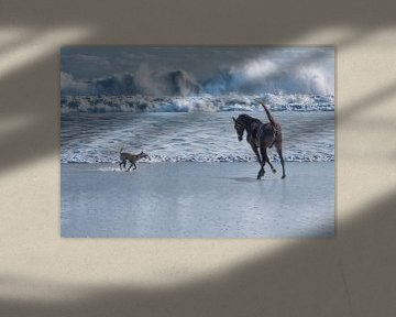 Paard en hond rennend bij zee  van Marcel van Balken