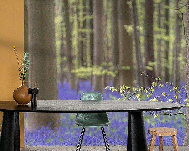 Beispiel fototapete: Der Hallerbos mit lila Hyazinthen von Cathy Php