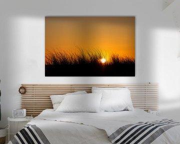 Sonnenuntergang auf dem Fischland-Darß in Prerow von Rico Ködder