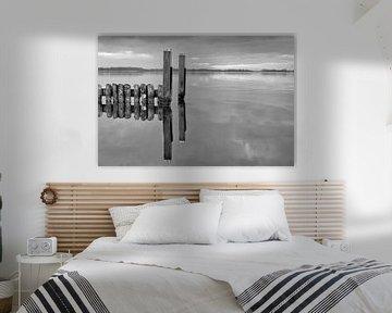Spiegelbeeld Nieuwkoopse plassen von Wim Goedhart