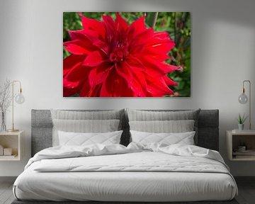 Flower 6 von Eugene Klinkenberg
