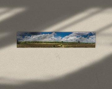 Den Treek van Vincent van den Hurk