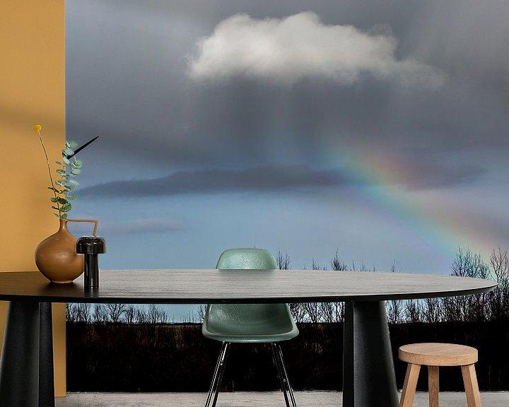 Sfeerimpressie behang: Regenboog van wim harwig