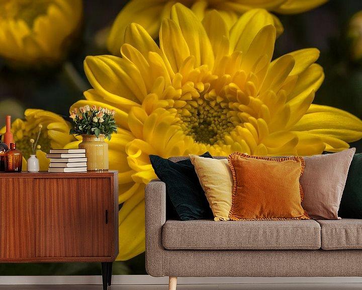 Sfeerimpressie behang: Gele chrysant bloem van Tim Abeln