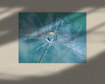 Flöckchen Löwenzahn (Farbe Aquamarin) 1 von Caroline Lichthart