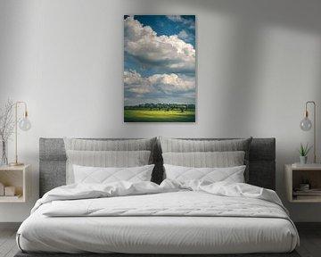 Willows and clouds (Schalkwijk, Utrecht) van Alessia Peviani