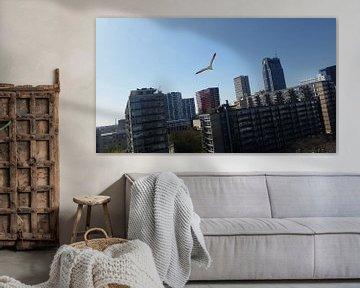 Rotterdam skyline von melike oguz