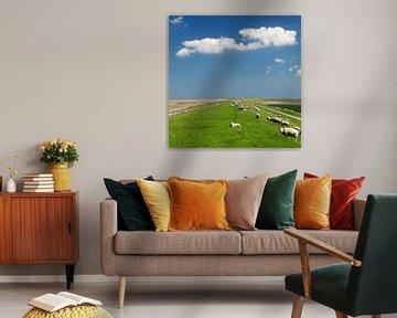 Schapen op de Waddendijk met een Hollandse lucht van Dirk-Jan Steehouwer