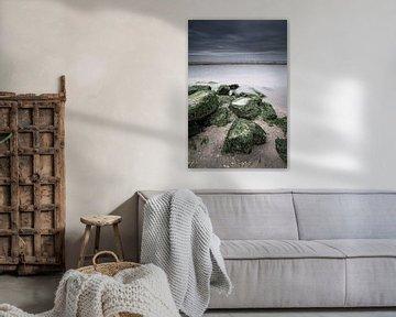 Die robuste Nordseeküste von Dirk-Jan Steehouwer