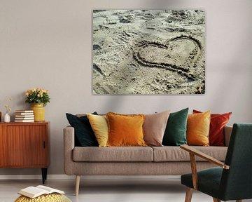 Zand van Pictures Of Nature