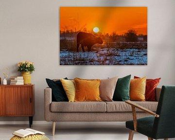 Zonsondergang Blauwe Kamer II von Sander Peters Fotografie