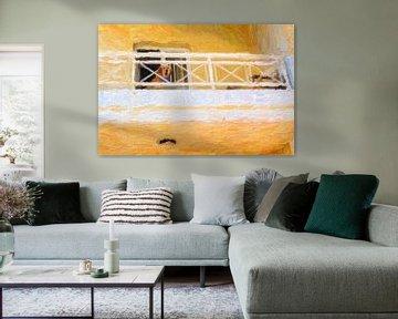 hond in gouden licht  van André Roodhuizen
