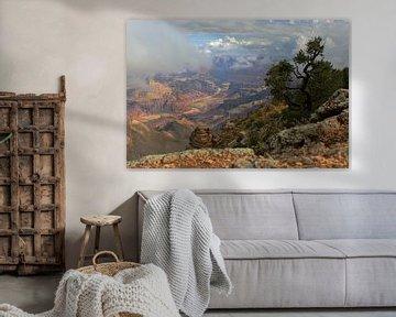 Colorado River in de Grand Canyon von Louise Poortvliet