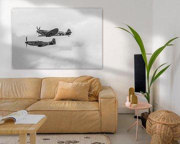 Spitfire & Mustang van Albertjan Geertsema