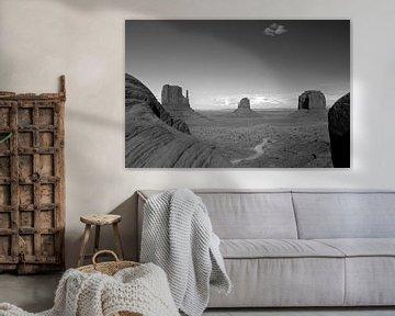Monument Valley von Louise Poortvliet