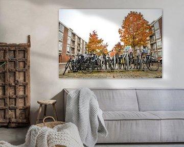 Fietsenstalling met herfstkleuren, Buitenveldert, Amsterdam Zuid van Paul van Putten