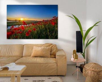 Poppy Colors I von Sander Peters Fotografie