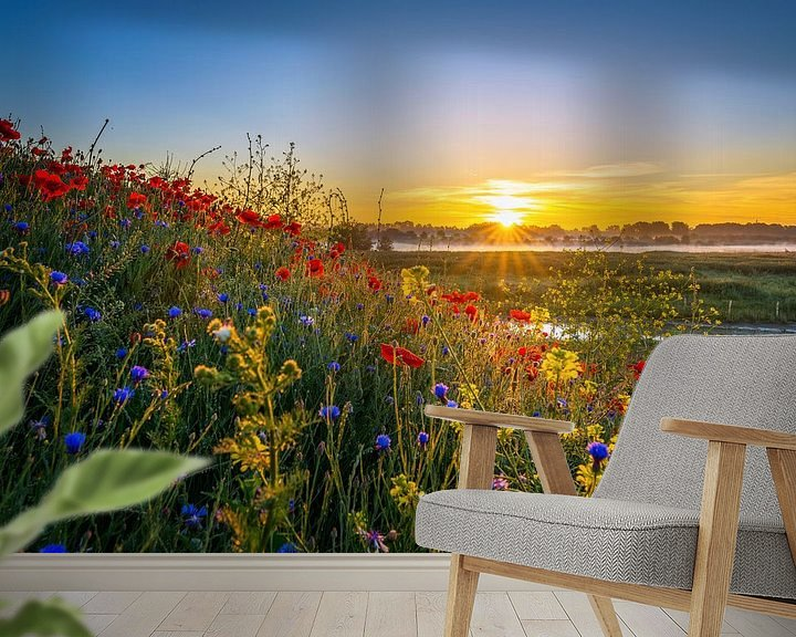 Sfeerimpressie behang: Poppy Colors II van Sander Peters Fotografie