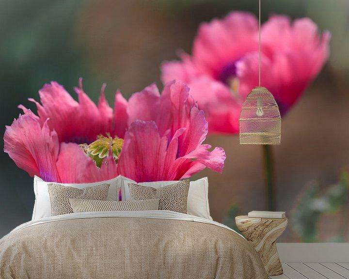 Sfeerimpressie behang: Roze papaver van Lily Ploeg