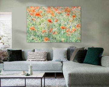 Mohnblumen von Niels Barto