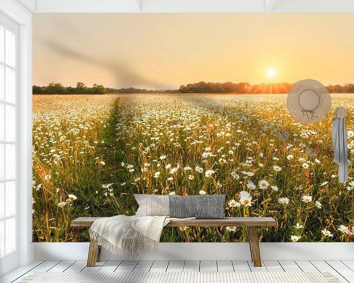 Sfeerimpressie behang: Zonovergoten margrietenveld van Karla Leeftink