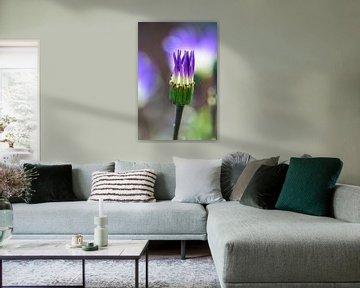 Purple Flower von Lisanne Bosch