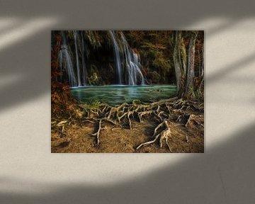 Enchanted Cascade van Lars van de Goor