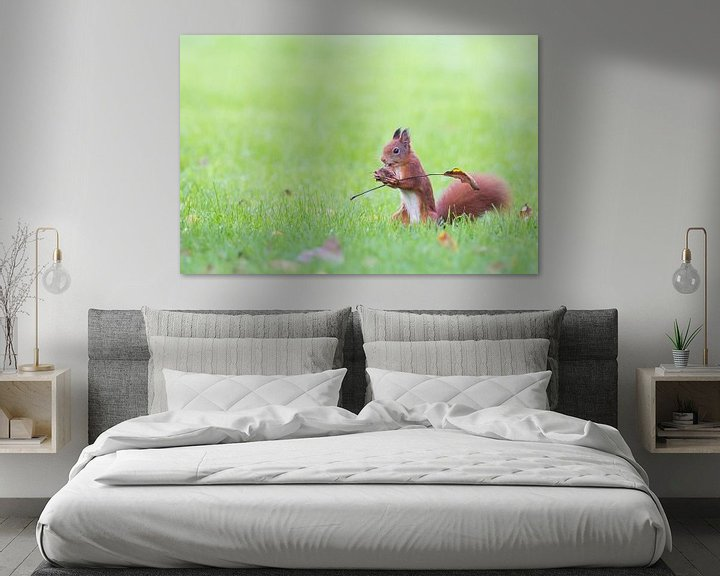 Sfeerimpressie: eekhoorntje met vlag van Kris Hermans