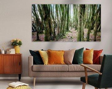 Door de bomen het bos ... van Arthur van Iterson
