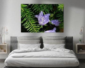 Paarse bloem von Myrte Wilms