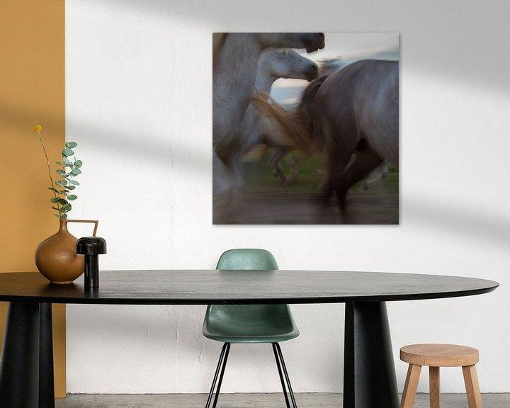 Beispiel: De dynamiek van een kudde paarden in galop von Suzan Baars