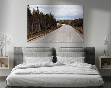 Een weg door Finland van Irene Hoekstra