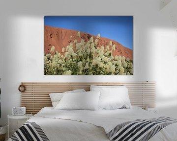 Witte Bloemen Ayers Rock  von Britt Lamers
