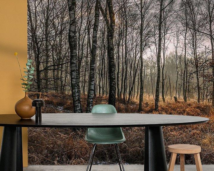 Sfeerimpressie behang: Berkenbomen van Davy Sleijster