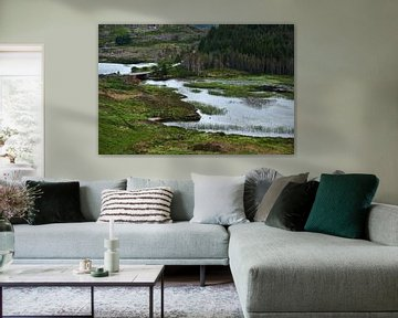 Schotse Hooglanden von Ineke Huizing