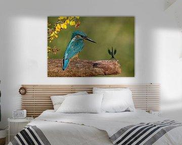 Ijsvogel met juffer von Gejo Wassink