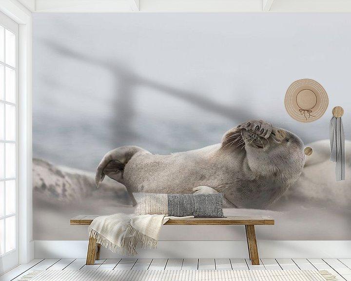 Beispiel fototapete: Seehund Helgoland von Ingrid Van Damme fotografie