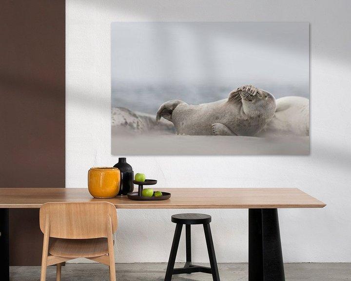Beispiel: Seehund Helgoland von Ingrid Van Damme fotografie
