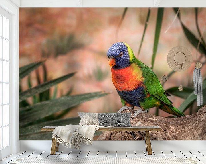 Sfeerimpressie behang: Kleurrijke Lory vogel van Tim Abeln