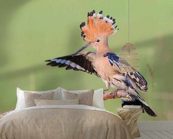 Sfeerimpressie behang: Hop een tak met gespreide vleugels van Nature in Stock